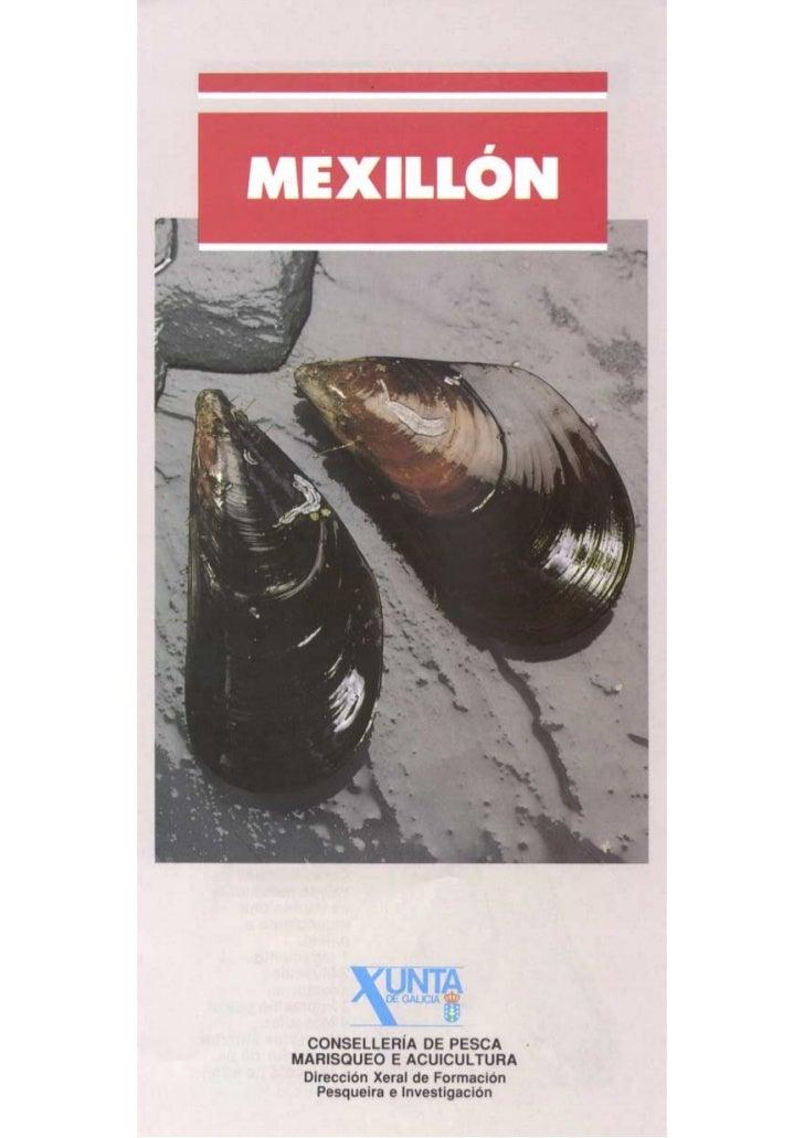 Mexillón