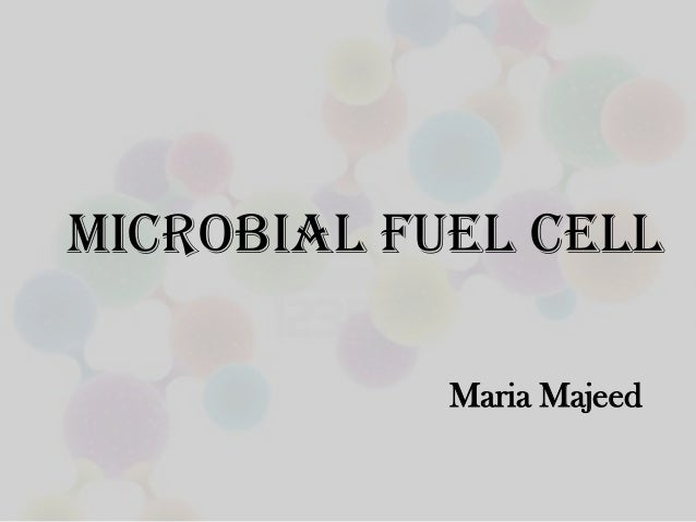 microbial fuel cell dissertation Thesis my deepest gratitude goes for their unconditional support in all the  projects of my life, their endless patience,  61 microbial fuel cell working  principle.