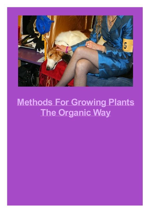 Methods For Growing Plants The Organic Way