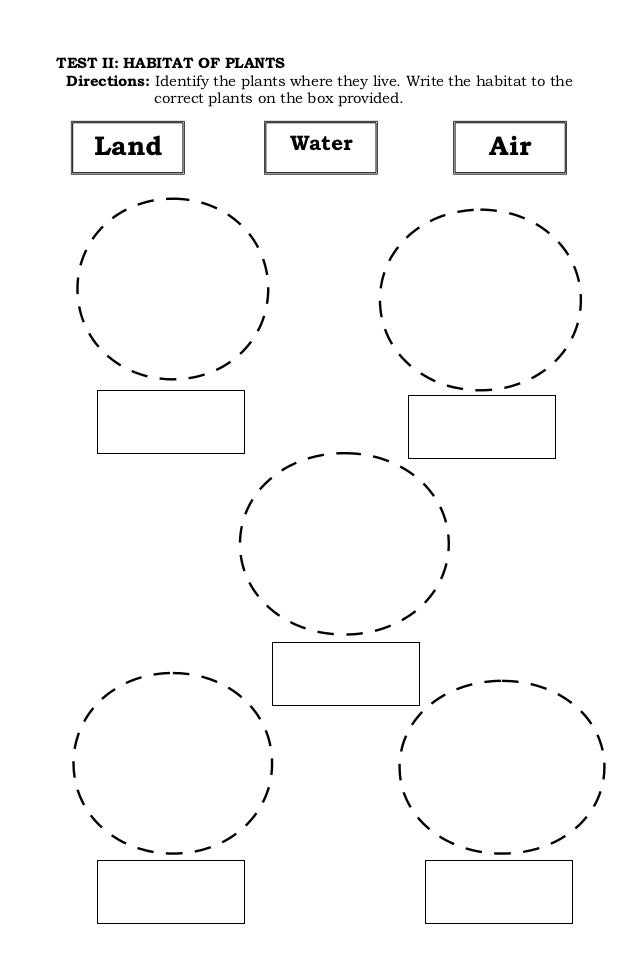 mflc kinder i 2nd quarter test. Black Bedroom Furniture Sets. Home Design Ideas