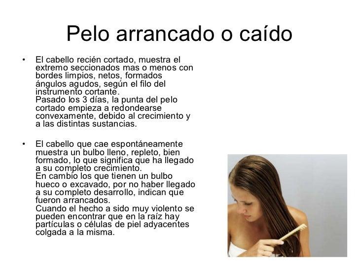 MEDICINA Y QUIMICA FORENSE ESTUDIO DE PELOS Y CABELLOS