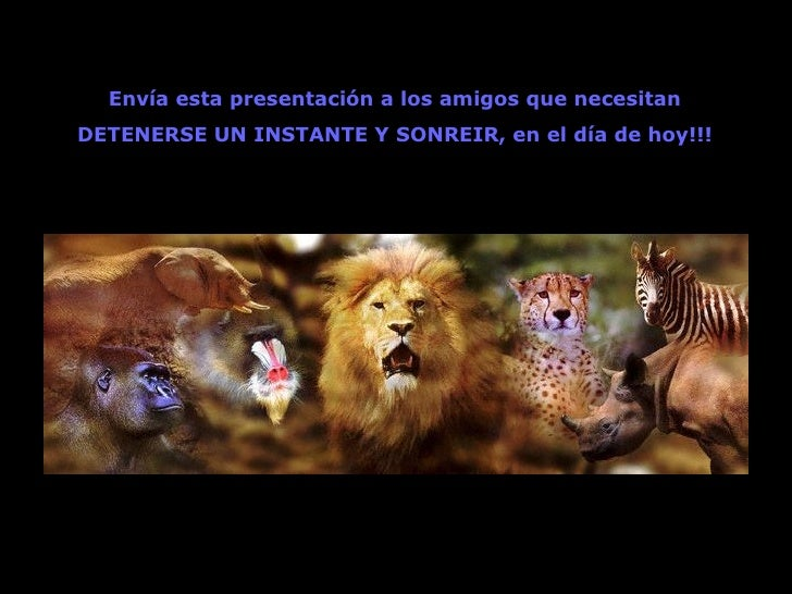 Envía esta presentación a los amigos que necesitan DETENERSE UN INSTANTE Y SONREIR, en el día de hoy!!!