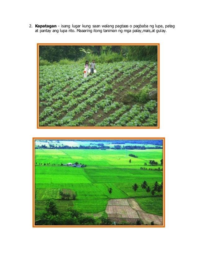2. Kapatagan - isang lugar kung saan walang pagtaas o pagbaba ng lupa, patag at pantay ang lupa rito. Maaaring itong tanim...