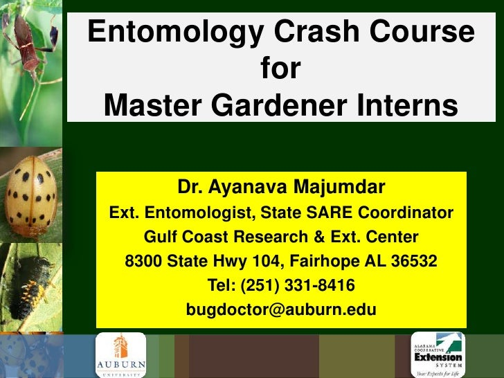 Entomology Crash Course for Master Gardener Interns<br />Dr. Ayanava Majumdar<br />Ext. Entomologist, State SARE Coordinat...