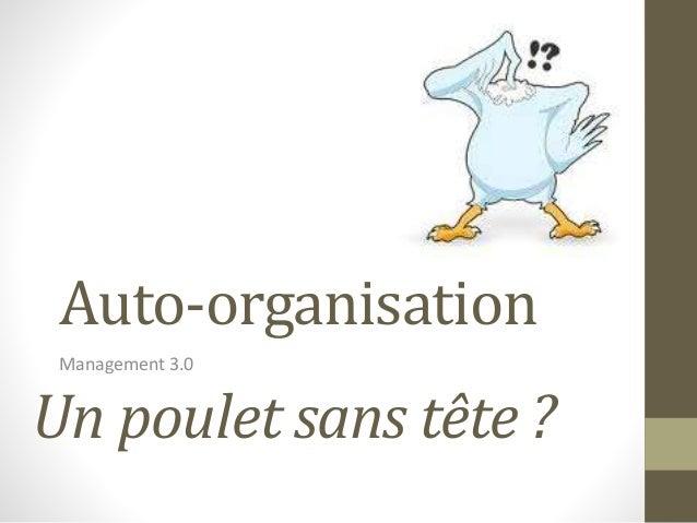 Auto-organisation Management 3.0 Un poulet sans tête ?