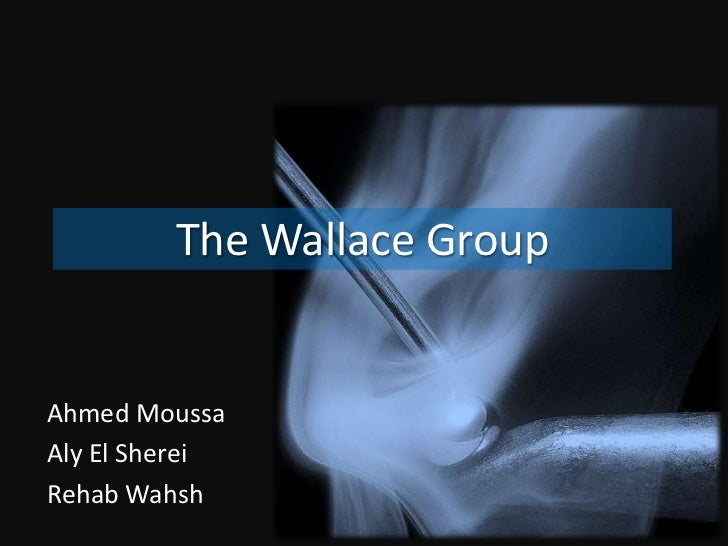 The Wallace Group<br />Ahmed Moussa<br />Aly El Sherei<br />Rehab Wahsh<br />