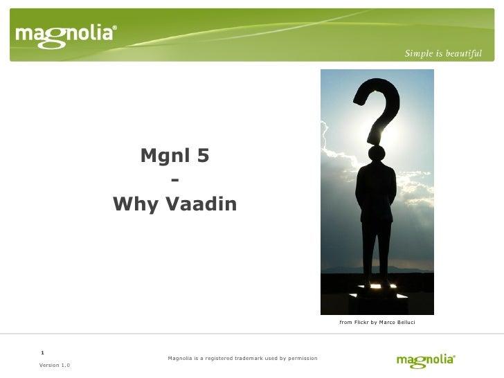 Mgnl 5                   -               Why Vaadin                                                                       ...