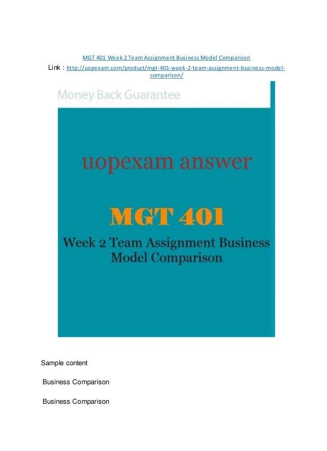 MGT 401 Week 2 Team Assignment