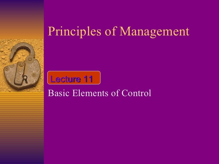 Principles of Management Basic Elements of Control Lecture 11