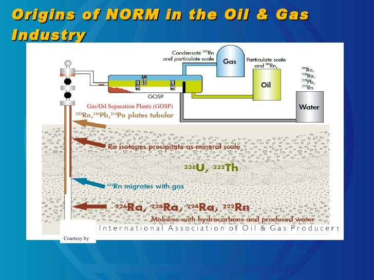 Origins Of Oil And Natural Gas