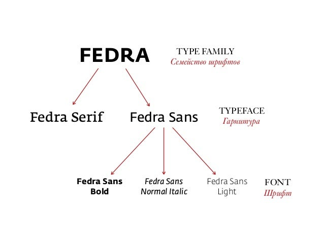 Fedra Sans  Normal Italic Fedra Sans  Light Fedra Sans  Bold TYPE FAMILY Семейство шрифтов TYPEFACE ГарнитураFedra Seri...