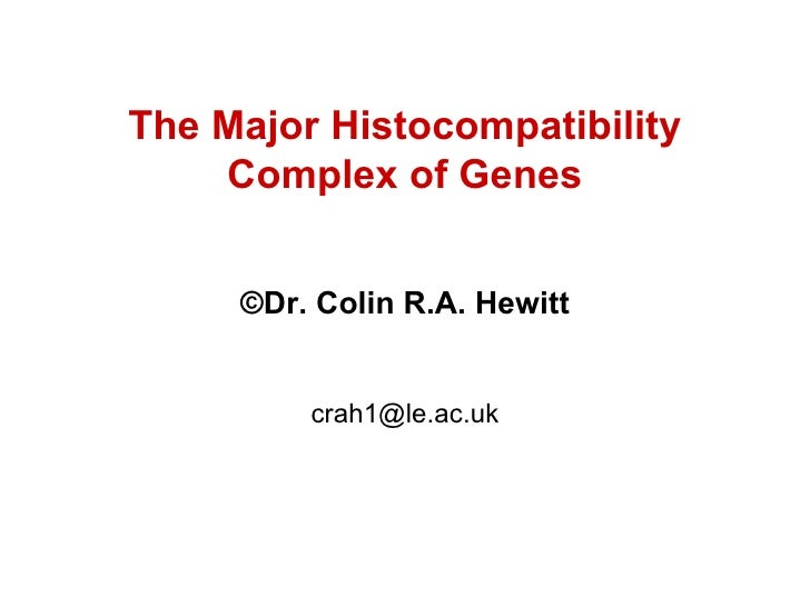 The Major Histocompatibility Complex of Genes © Dr. Colin R.A. Hewitt [email_address]