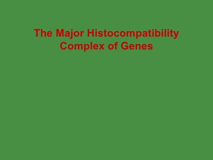 The Major Histocompatibility Complex of Genes