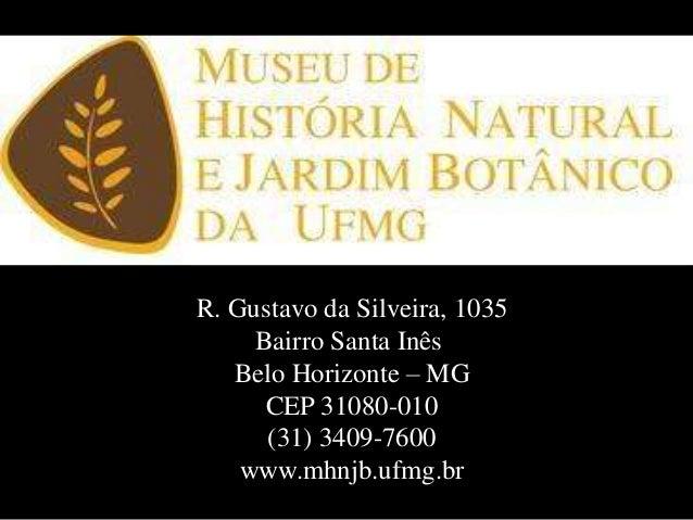 R. Gustavo da Silveira, 1035Bairro Santa InêsBelo Horizonte – MGCEP 31080-010(31) 3409-7600www.mhnjb.ufmg.br