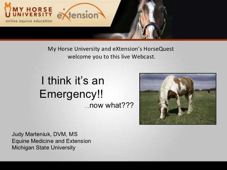 Equine Emergency First Aid (Marteniuk)