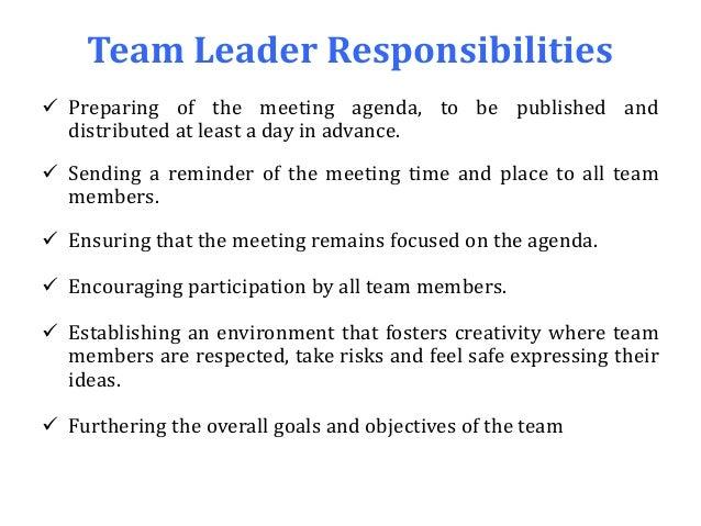 team leader responsibilities - Ex