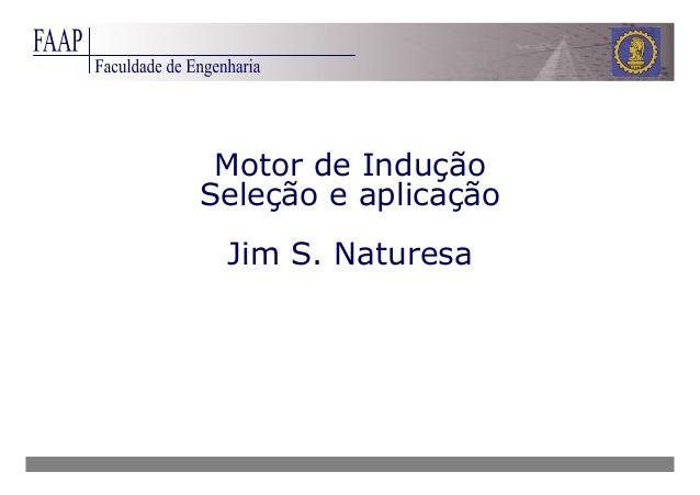 Motor de Indução Seleção e aplicação Jim S. Naturesa
