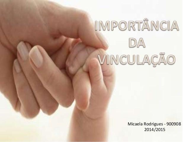 Micaela Rodrigues - 900908  2014/2015