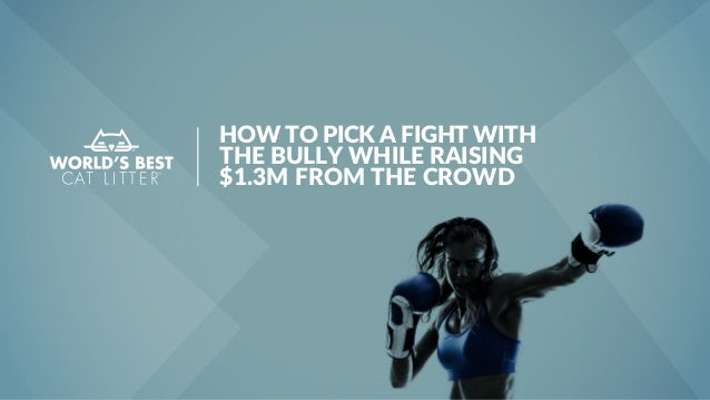 HOW TO PICK A FIGHT WITH THE BULLY WHILE RAISING $1.3M FROM THE CROWD