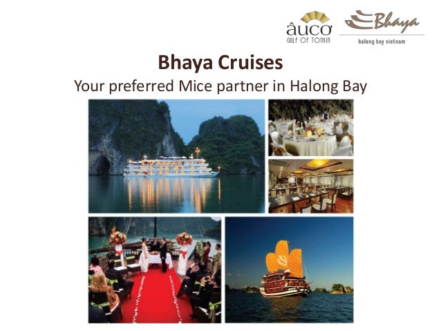 Bhaya Cruises Your preferred Mice partner in Halong Bay
