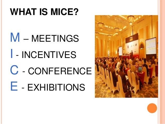 Αποτέλεσμα εικόνας για UK's MICE sector