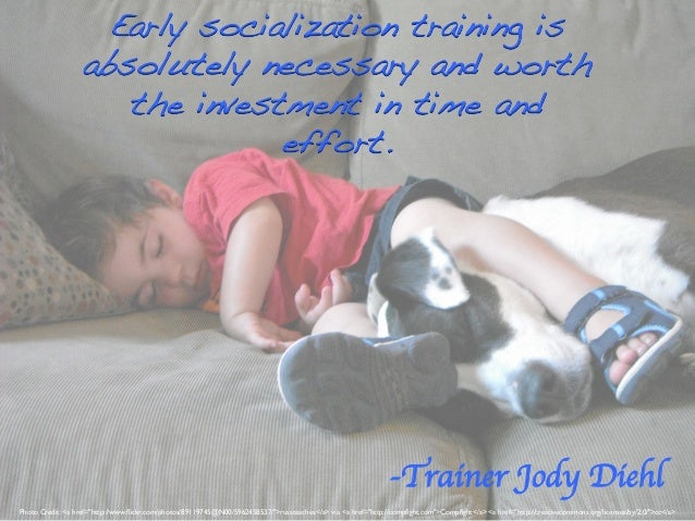 Early socialization training is absolutely necessary and worth the investment in time and effort.!  -Trainer Jody Diehl 	 ...