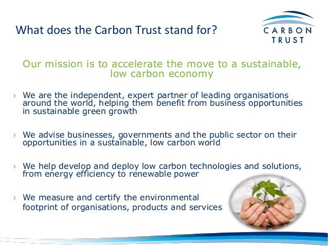 What Does Cts Stand For >> Three Pillars of Environmental Sustainability - Michael