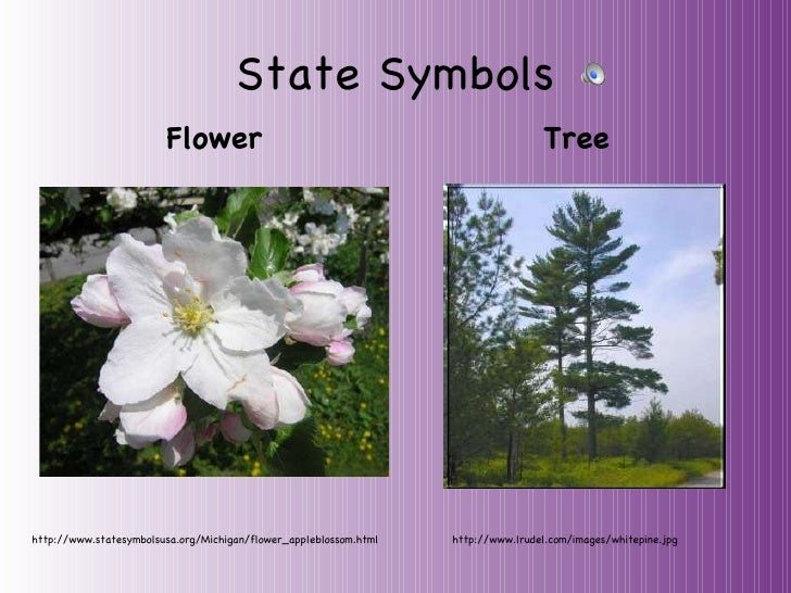 Michigan Ppt With Sound