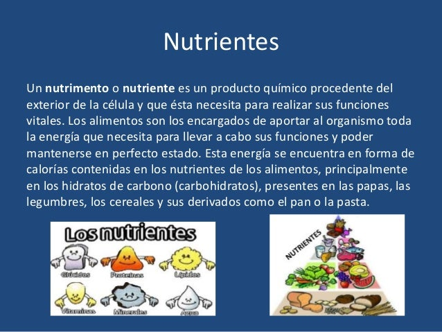 Nutrientes y calor as - Alimentos que queman calorias ...
