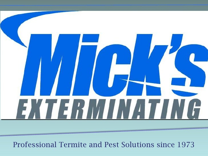Professional Termite and Pest Solutions since 1973<br />