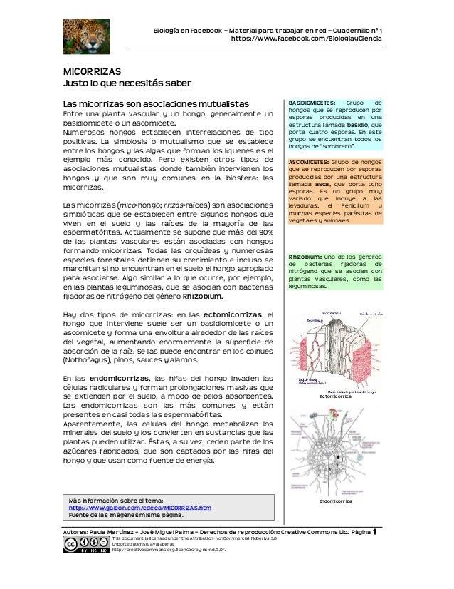 Biología en Facebook – Material para trabajar en red – Cuadernillo nº 1                                                   ...