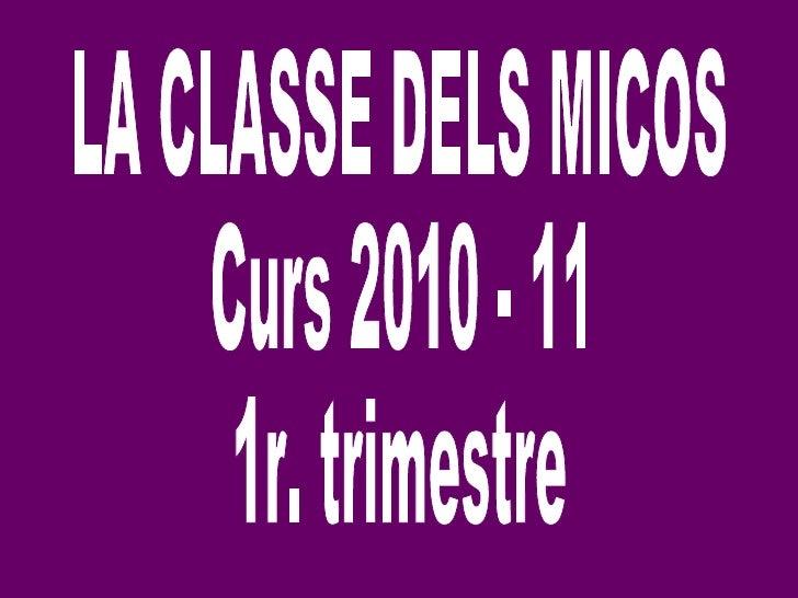 LA CLASSE DELS MICOS Curs 2010 - 11 1r. trimestre