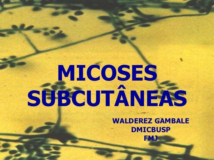 MICOSES SUBCUTÂNEAS Walderez Gambale ICBUSP MICOSES SUBCUTÂNEAS WALDEREZ GAMBALE DMICBUSP FMJ