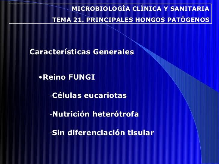 MICROBIOLOGÍA CLÍNICA Y SANITARIA     TEMA 21. PRINCIPALES HONGOS PATÓGENOSCaracterísticas Generales  •Reino FUNGI    -Cél...