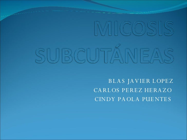 BLAS JAVIER LOPEZ CARLOS PEREZ HERAZO  CINDY PAOLA PUENTES