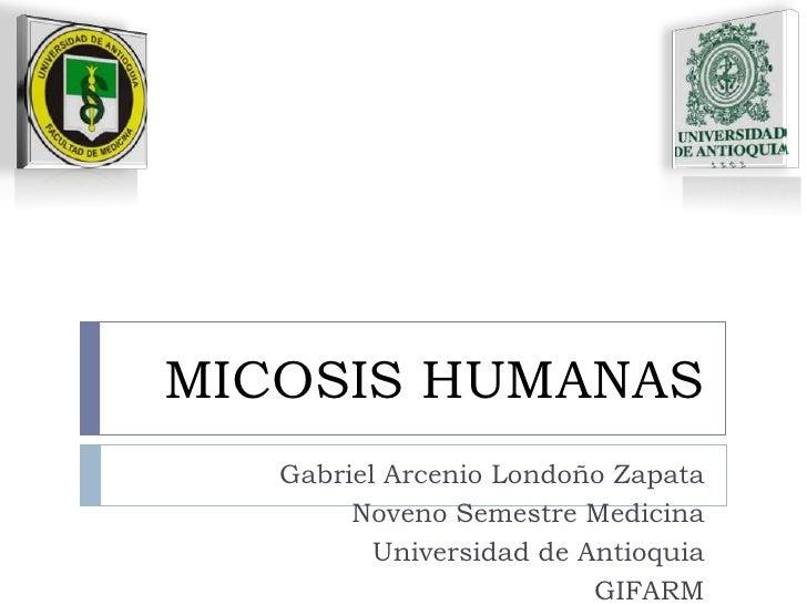 MICOSIS HUMANAS<br />Gabriel Arcenio Londoño Zapata<br />Noveno Semestre Medicina<br />Universidad de Antioquia<br />GIFAR...