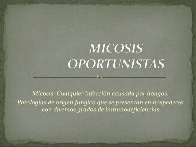 Micosis: Cualquier infección causada por hongos. Patologías de origen fúngico que se presentan en hospederos con diversos ...