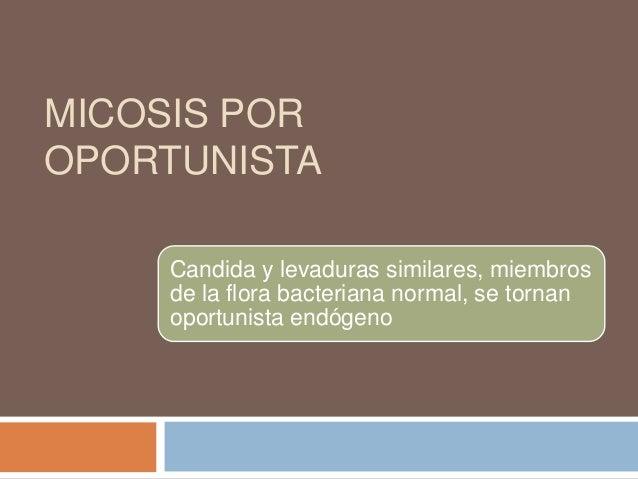 MICOSIS POROPORTUNISTA    Candida y levaduras similares, miembros    de la flora bacteriana normal, se tornan    oportunis...