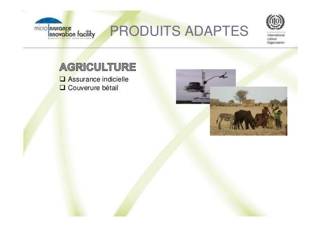 Assurance indicielle Couverure bétail PRODUITS ADAPTES
