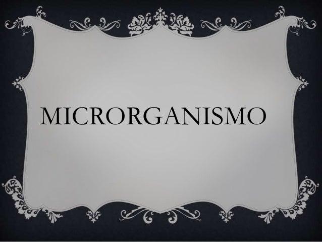 MICRORGANISMO