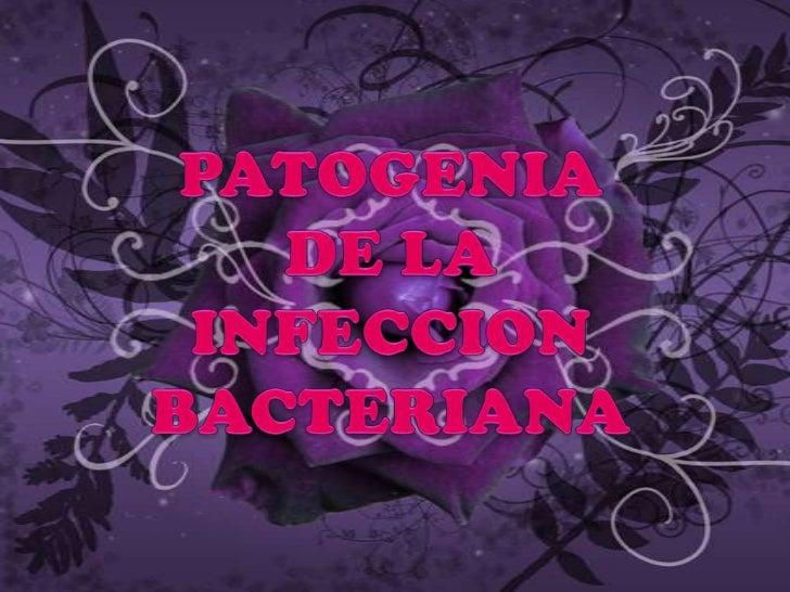 Identificación debacterias que causan la     enfermedad           La patogenia de la infección        bacteriana incluye e...