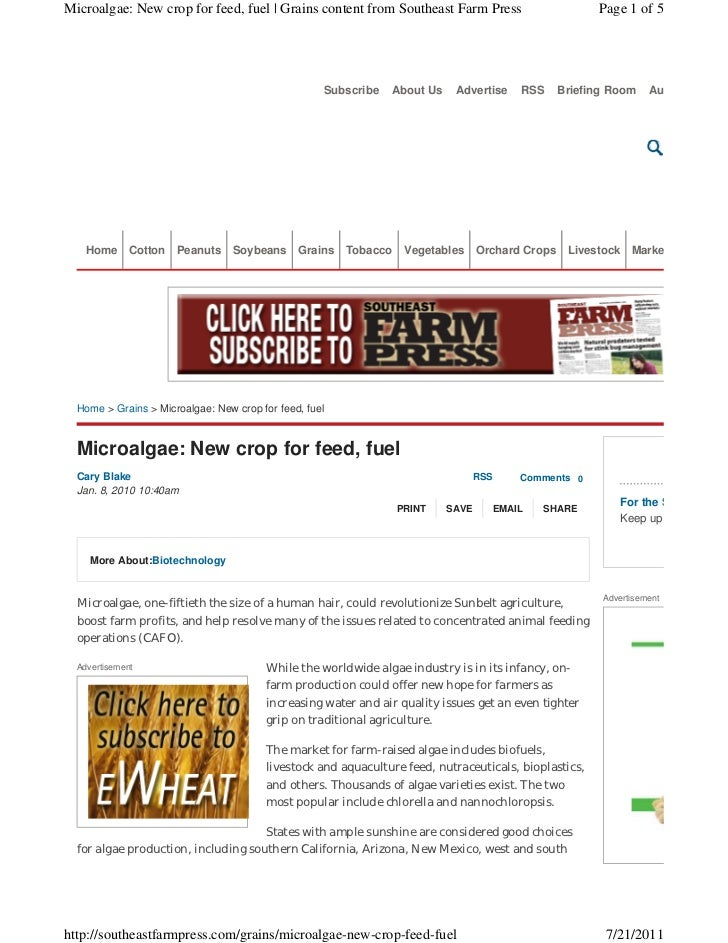 Microalgae: New crop for feed, fuel | Grains content from Southeast Farm Press                           Page 1 of 5      ...