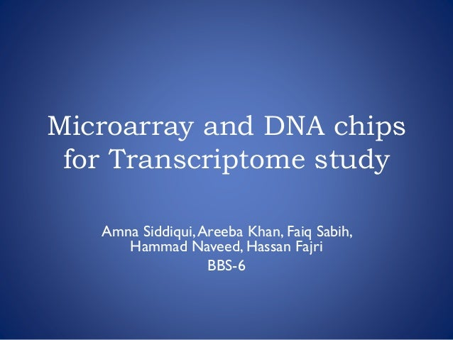 Microarray and DNA chips for Transcriptome study Amna Siddiqui,Areeba Khan, Faiq Sabih, Hammad Naveed, Hassan Fajri BBS-6