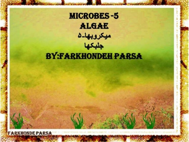 Microbes 5