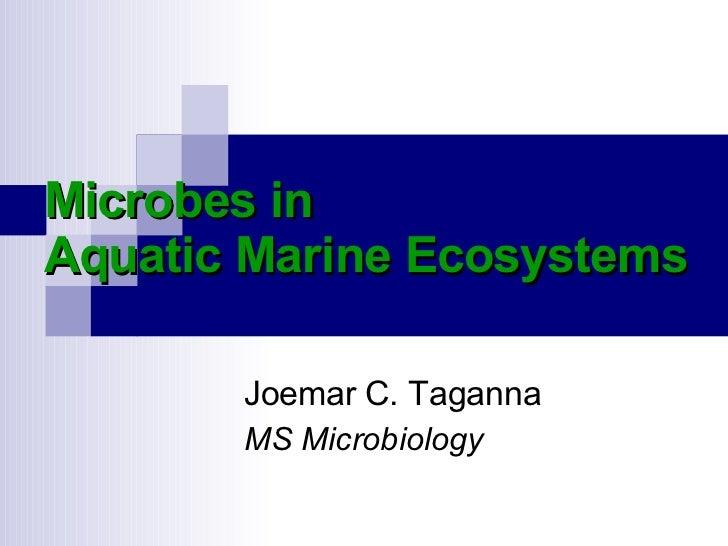 Microbes in Aquatic Marine Ecosystems Joemar C. Taganna MS Microbiology