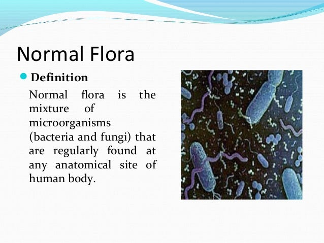 Microbial flora of the human body for Flore definition