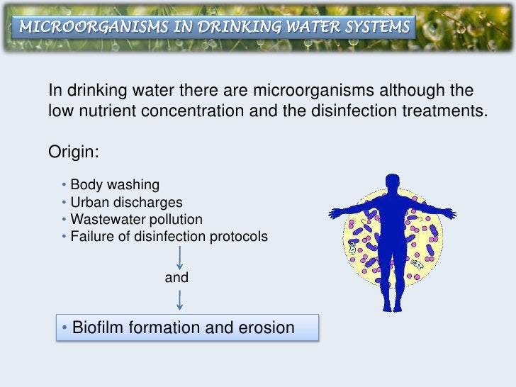 microbiological aspects of biofilms and drinking Click now : [download] microbiological aspects of biofilms and drinking water (microbiology of extreme and unusual environments) by steven lane percival.