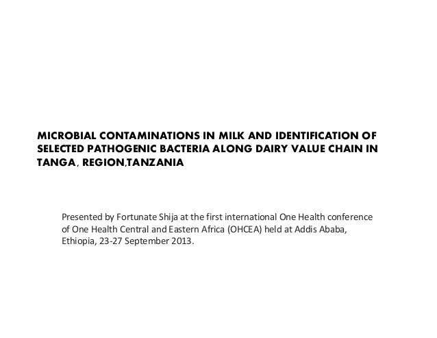 MICROBIAL CONTAMINATIONS IN MILK AND IDENTIFICATION OF SELECTED PATHOGENIC BACTERIA ALONG DAIRY VALUE CHAIN IN TANGA , REG...