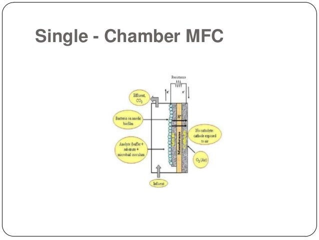 Microbial Fuel Cell For Conversion Of Chemical Energy To