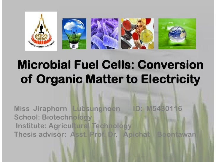 Microbial Fuel Cells: Conversionof Organic Matter to ElectricityMiss Jiraphorn Lubsungnoen         ID: M5430116School: Bio...